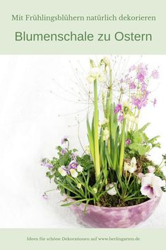 Ostern kann kommen Quick and easy, you can conjure a spring and Easter decoration, if you plant a be