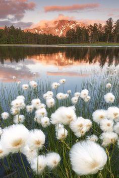 d06b3dac9b 48 Best Favorite Places   Spaces images