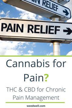Cannabis for Pain Chronic Pain, Fibromyalgia, Chronic Illness, 100 Pour Cent, Treating Insomnia, Alternative Treatments, Alternative Therapies, Neuropathic Pain, Natural Pain Relief