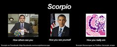 for all you scorpios out there ;)