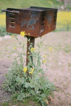 Canon Ftb (35mm Fuji 400 Superia Film) 50MM lens Fine Arts Film Photography