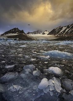 In the Arctic - Smeerenburg Fjord, Svalbard by Hans Strand