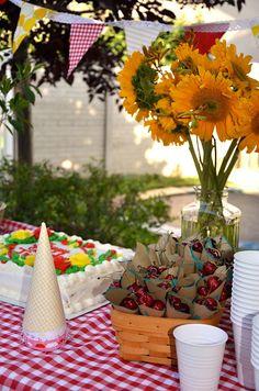 Johnny and Ashley: 1st birthday picnic party