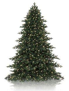 Carolina Hemlock Artificial Christmas Tree  get 7.5 height + multi/clear combo