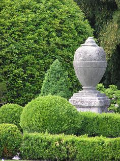clipped topiary and classical garden urn on plinth
