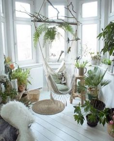 Indoor gardening will end in beautiful decoration in your home together with cleaner air. The pond doesn't have to be huge to create interest and add value to your garden. You can make your own roof garden that is a sort of indoor gardening. My New Room, My Room, Plantas Indoor, Room With Plants, House Plants, Plant Rooms, Home Decor With Plants, Home And Deco, My Dream Home