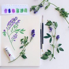 Wildflower Botanical Floral Painting & Illustration | Sketchbook Gouache & Watercolour Art by PRINTSPIRING | www.instagram.com/printspiring