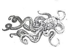giant octopus tattoo drawing - Google Search