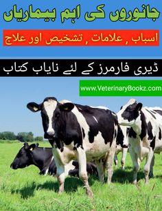 Janwaron Ki Eham Bemariyan Or Onka ilaaj Free Books Online, Free Pdf Books, Free Ebooks, Animal Medicine, Medicine Book, Most Popular Books, Dairy Form, Cattle Farming, Veterinary Medicine