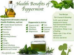 Pepperment Oil is awesome and a little dap'll do ya!  Wow!!!