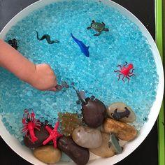 Nursery Activities, Toddler Learning Activities, Montessori Activities, Infant Activities, Play Based Learning, Sensory Table, Baby Sensory, Sensory Bins, Sensory Play