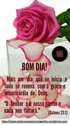 bom dia! Morning Quotes, Cooking Timer, Good Night Msg, Beautiful Flowers, Happiness, Friends