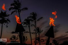 Merged Fires - Pinned by Mak Khalaf Picture capturing the moments after sunset with evening getting young Landscapes beachbeautifulbluecloudsgreenhawaiilightoceanpalmsandseaskysummersunsunrisesunsettraveltreetreesuswater by Inderwadhwa