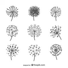 seed head silhouette - Google Search