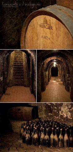 L'amaranto e il melograno: Il frascati e gli altri vini della famiglia Pallavicini