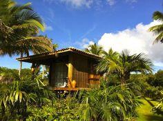 Lugar de natureza generosa em Maraú na Bahia.