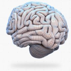 Your Brain Map: 84 Strategies for Accelerated Learning 3 D interactive map