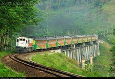 Matarmaja Train Destination from Jakarta PasarSenen to Malang passing Lahor Bridge between Blitar and Malang city.