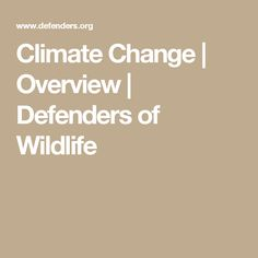 Climate Change | Overview | Defenders of Wildlife