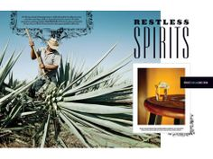 Texas Monthly on the App Store on iTunes