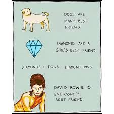 """""""Dogs are a mans best friend, diamonds are a girls best friend. Diamond + Dogs = Diamond dogs. David Bowie is everyone's best friend"""""""