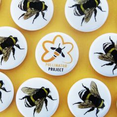 Earth Day & Bumble Bee Buttons | Six Cent Press