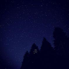 【riku_anemone】さんのInstagramをピンしています。 《お山  #星空#山#森#池田山#夜景#スターリスカイ》