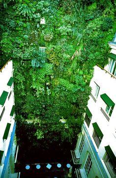 Paris - Ile de France   Mur Vegetal Patrick Blanc