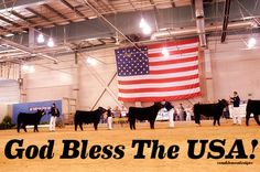 God Bless the USA! Livestock Motivation by Ranch House Designs. #livestockmotivation #stockshowlife #showtowin #livetoshow #agriculture