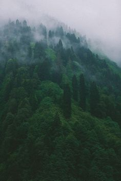 Karadeniz by aliosman kurtulus, via Behance Wild Nature, Black Sea, Galaxy Wallpaper, Amazing Nature, Mists, Nature Photography, Beautiful Places, Around The Worlds, Behance