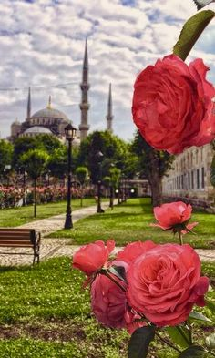 Fotoğraf Beautiful Places In The World, Places Around The World, Wonderful Places, Islamic Wallpaper Hd, Switzerland Cities, Mosque Architecture, Istanbul Travel, Beautiful Mosques, Temples