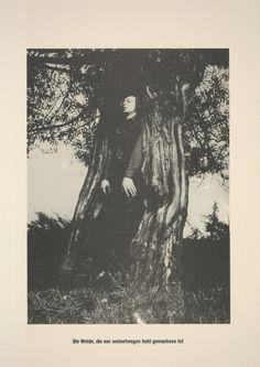 . . . Höhere Wesen befehlen   Sigmar Polke, . . . Höhere Wesen befehlen (1968)