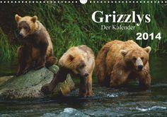 Grizzlys - Der Kalender CH-Version (2014) Monatskalender Grizzlybären in ihrer natürlichen Umgebung. Beeindruckende Fotos dieser Spezie aufgenommen in der Wildnis Alaskas.