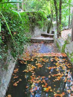 Ai mê rico Algarve!: Outono nas Caldas de Monchique
