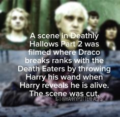 Discovered by Find images and videos about harry potter, draco malfoy and harry potter fact on We Heart It - the app to get lost in what you love. Harry Potter Ships, Harry Potter Facts, Harry Potter Universal, Harry Potter Fandom, Harry Potter World, Harry Potter Deleted Scenes, Drarry, Dramione, Slytherin Pride