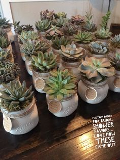 Bridal shower favors by salvage succulents #succulents #salvagesucculents #favors #bridalshowerfavors