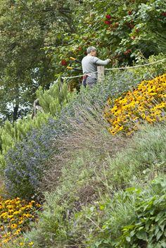 Giardino dell'apiario sperimentale di Marentino www.coopagridea.org