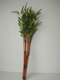 12 Pflanzen Bambus Bambusstäbe neu in OVP! Dekoration Bambusblätter Kunstblumen