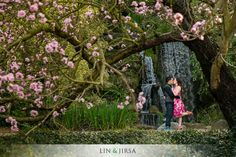 Please enjoy this gorgeous Los Angeles County Arboretum and Botanic Garden engagement featuring Josh and Erica. Also, be sure to follow us on our Facebook Page for updates and the latest with LJP!     Engagement Photography Location: Los Angeles County Arboretum and Botanic Garden 301 N Baldwin Ave, Arcadia, CA 91007 (626) 821-3222 If … Continue reading Los Angeles Arboretum Engagement | Josh and Erica →
