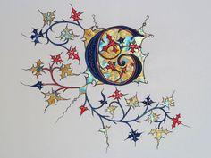 Illuminated Letter 'G' Alphabet Art, Letter Art, Medieval Manuscript, Medieval Art, Illuminated Letters, Illuminated Manuscript, Creative Lettering, Hand Lettering, Art Perdu