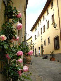 Radda in Chianti (Tuscany Holiday: Milan--Florence--Greve--Panzano--Castellina--Radda--Siena--San Gimignano--Lucca--Pisa)