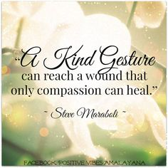 """""""A kind gesture can reach a wound that only compassion can heal.""""  ~ Steve Maraboli ~"""