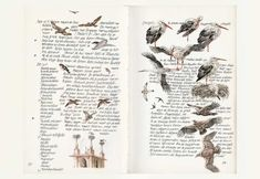 illustraties sprookjes   Prins Bernhard Cultuurfonds, Stichting Sanssouci, Stichting Harten ...