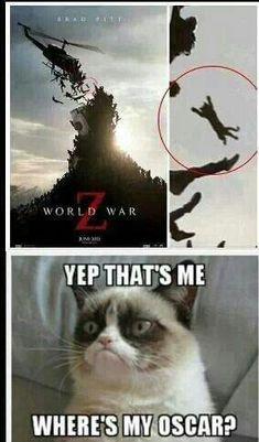 Grumpy cat Source by videos wallpaper cat cat memes cat videos cat memes cat quotes cats cats pictures cats videos Grumpy Cat Quotes, Grump Cat, Funny Grumpy Cat Memes, Cat Jokes, Stupid Funny Memes, Funny Relatable Memes, Cat Cat, Funny Minion, Cute Animal Memes