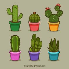 Pack divertido de cactus coloridos Vector Gratis The Effective Pictures We Offer You About Cactus manualidades A quality picture can tell you many things. art dibujo garden indoor plants drawing appartement bathroom home decor wood room decor Cactus House Plants, Cactus Pot, Cactus Flower, Indoor Cactus, Garden Cactus, Succulents Drawing, Cactus Drawing, Cactus Painting, Illustration Cactus