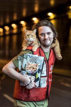 Un gato callejero llamado Bob, cinco razones para leerlo: te hará reír, llorar, nos recuerda que hay muchos hombres de gatos, ayuda a los gatos callejeros