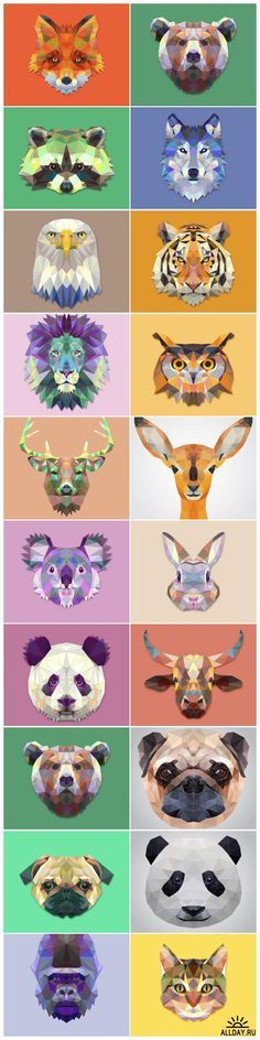 Polygonal animals                                                                                                                                                     More