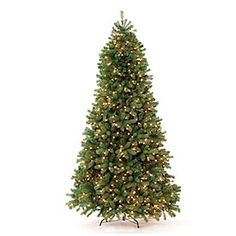7.5' Pre-Lit Artificial Christmas Tree, Mixed Needle with Clear Lights at Big Lots. #biglots