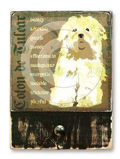 #CotonDeTulear  #ruckusdog #ruckusdogproducts