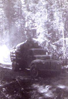 Logs and Trucks